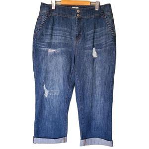 d/C Jeans   Distressed Curvy Jean Capri
